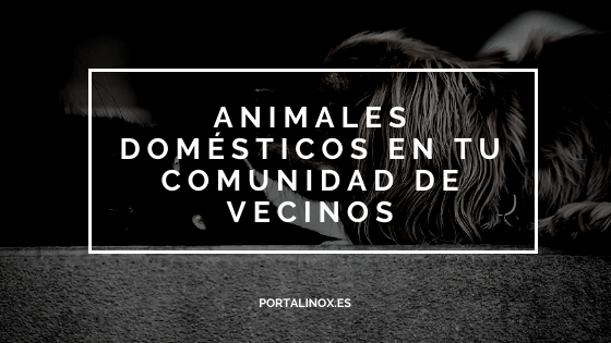 Animales domésticos dentro de la Comunidad de Vecinos