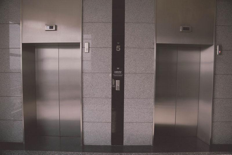 jurisprudencia perros ascensor